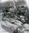 """Врубель М.А. Илл. к стихотворению М.Ю. Лермонтова """"Еврейская мелодия (из Байрона)"""". 1890-1891. Б., акв. (черная), белила."""