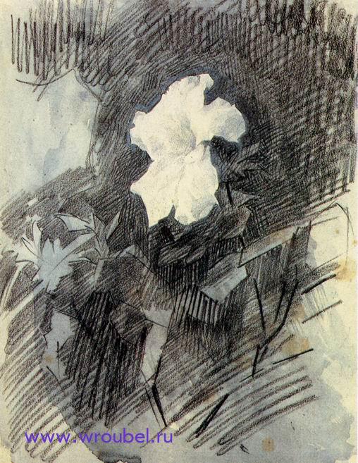 """1886 Врубель М.А. """"Белая азалия с листьями."""""""