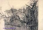 Врубель М.А. Дерево у забора. 1903-1904. Бумага, графитный карандаш. 24,9х35,7. ГТГ