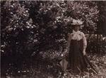 Н.И. Забела-Врубель у куста сирени в саду на хуторе Н.Н. Ге. Фото В.Д. Замирайло. 1900. ОР ГРМ. ф. 34, ед. хр. 84, л. 15